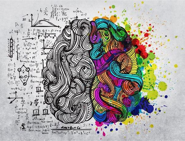 """Выращивание струны мозга """"УКАЗ-ЗАКАЗ"""""""